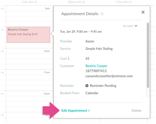 Highlighting the Edit Appointment link in the Appointment Details menu.