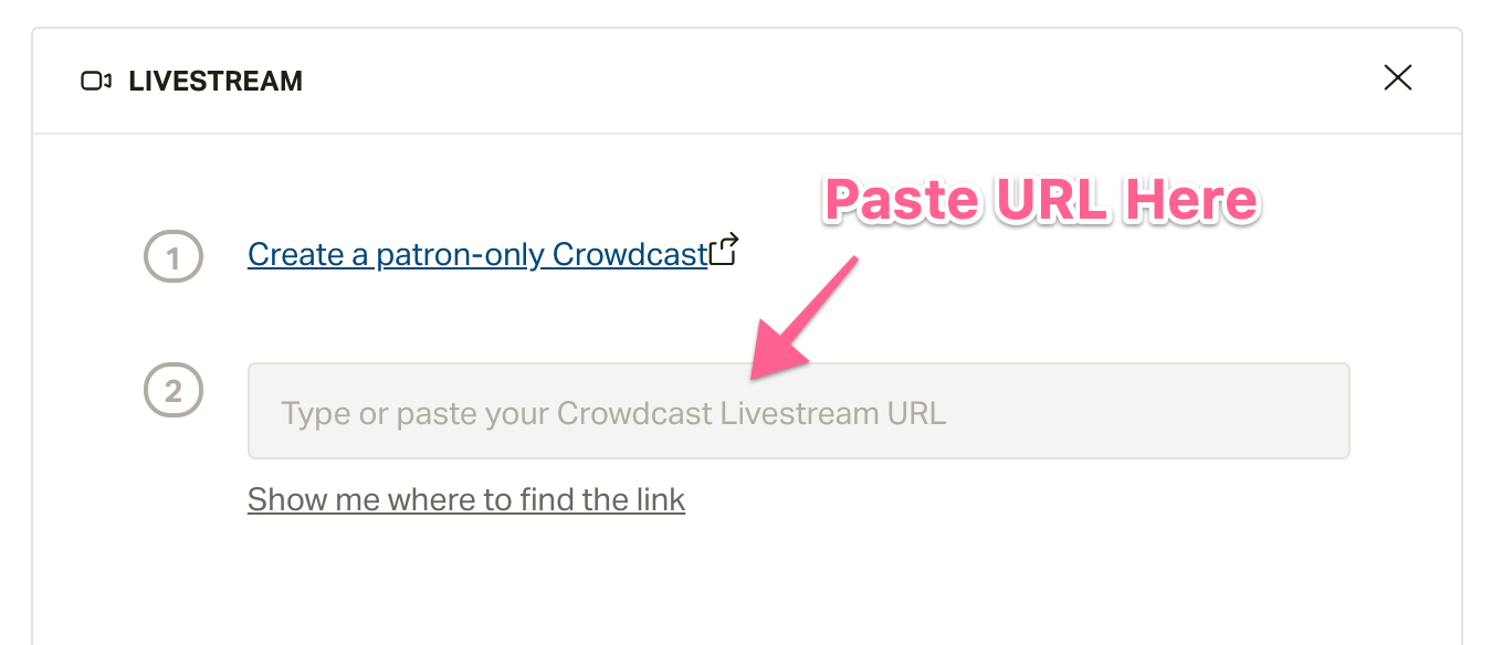 Screenshot of box to place livestreaming URL.