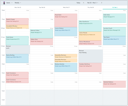 Weekly view of a Setmore calendar.