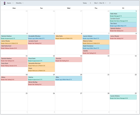 Monthly view of a Setmore calendar.
