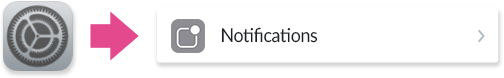 Choosing Notifications under Settings on the iPhone