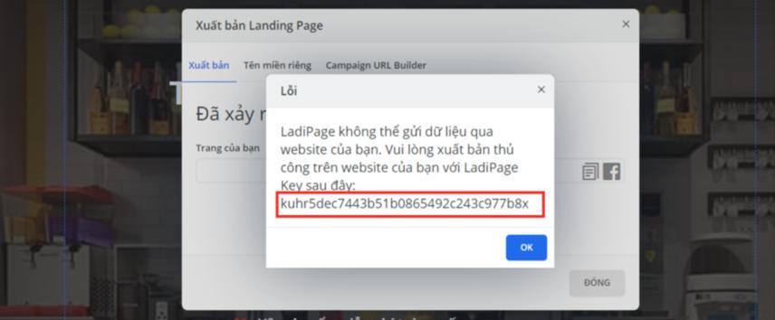 Hướng dẫn tạo Landing Page bán hàng với Netsale bằng LadiPage 18