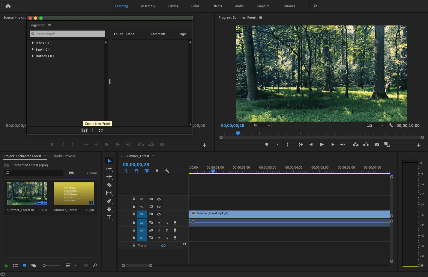 Create a new proof in Premiere Pro using the PageProof panel