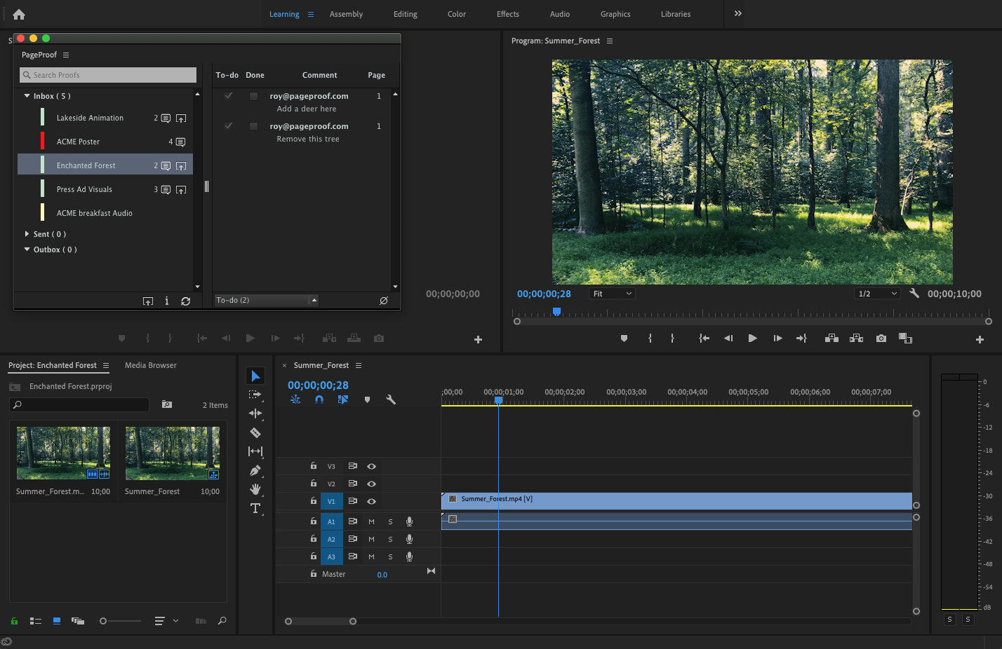 PageProof panel in Adobe Premiere Pro
