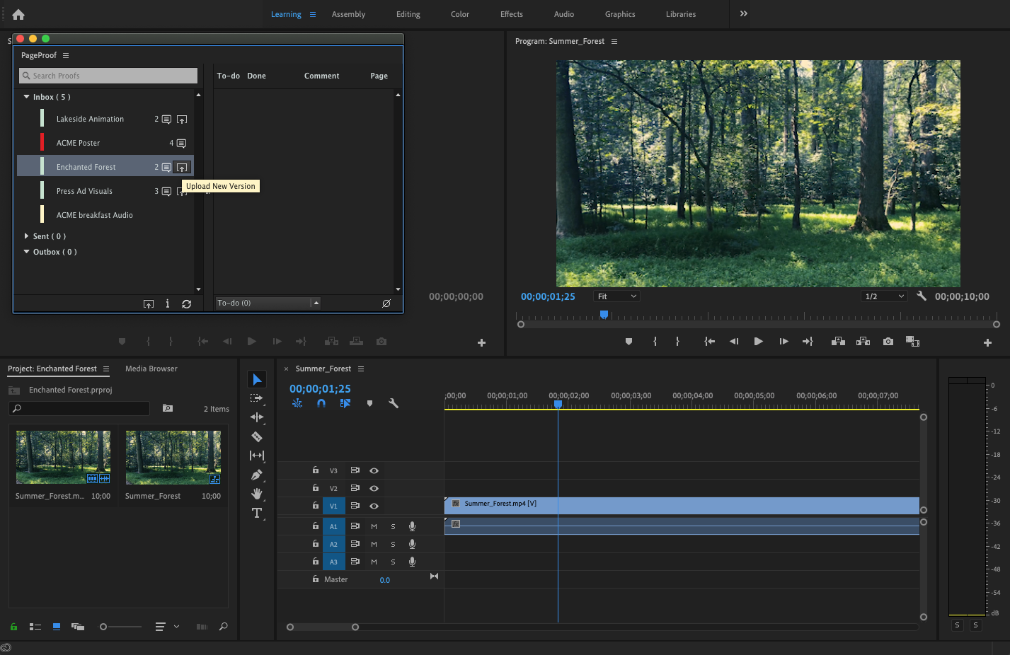 PageProof panel in Adobe Premiere Pro showing upload new version