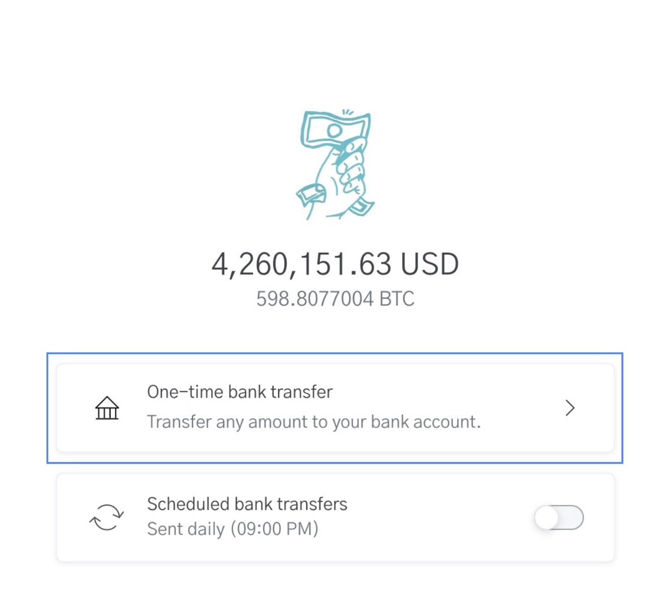 Image of USD Wallet for sending Bank Transfers with OpenNode