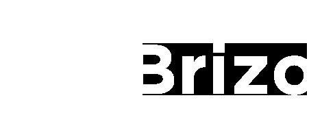 Справка Brizo