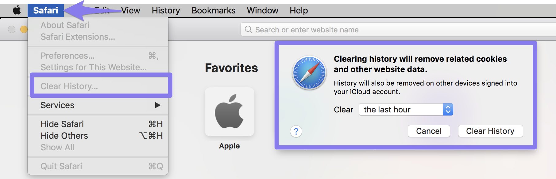Clear browsing data menu in Safari 8 and later.