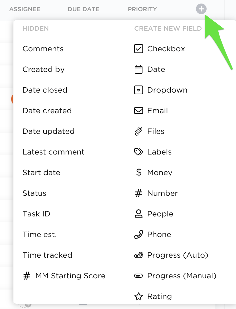 Clicking the + sign in the upper right corner of your screen to add a new custom field