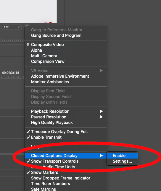 Enable Closed Caption Display in Premiere