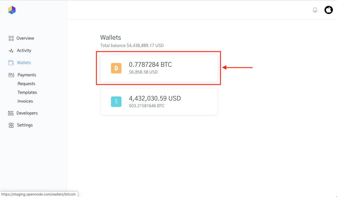 Image of Wallets available for currency conversions using OpenNode