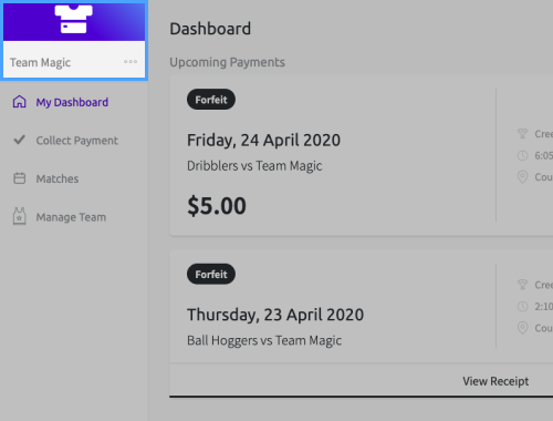 Screenshot of the Teammo dashboard for team managers, highlighting the edit team button