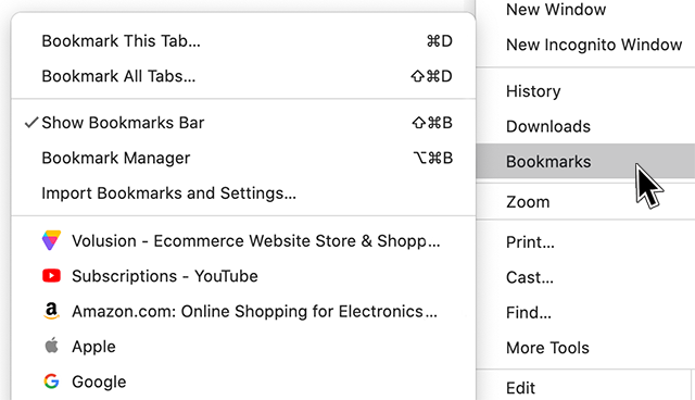 Examples of favicons in a list of bookmarks.