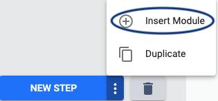 Inserting a module