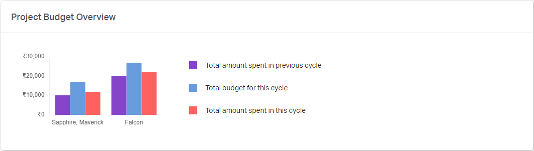 Budget overview project wise