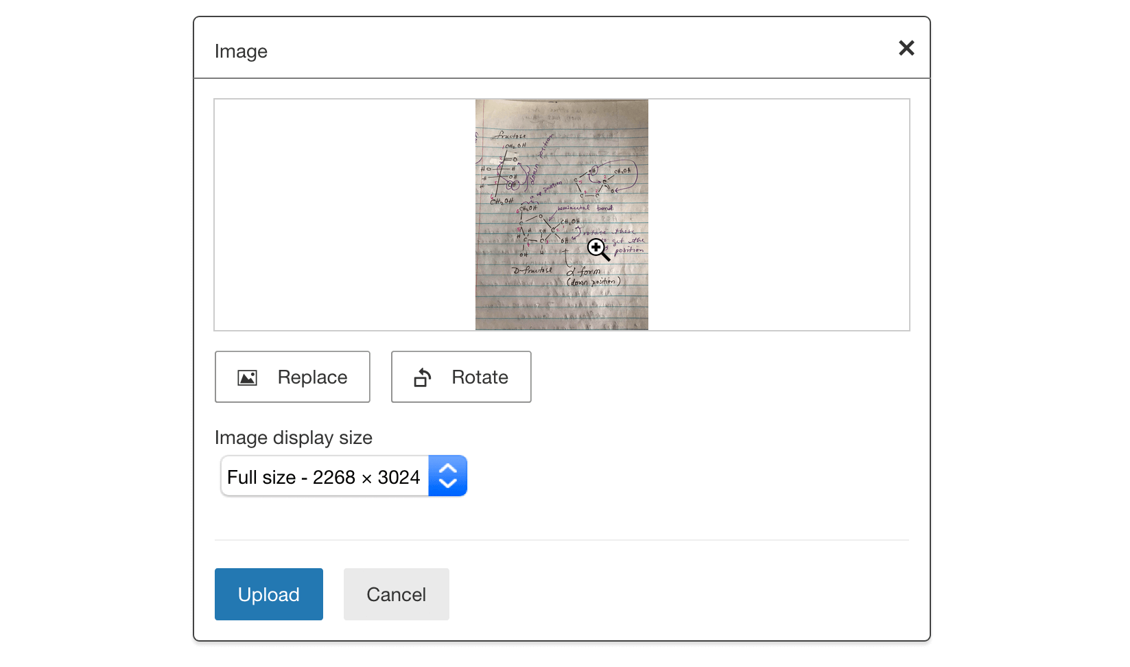 Student can choose to replace, rotate, and change the image display size before uploading their image to the essay response.