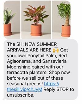 Screenshot of MMS message
