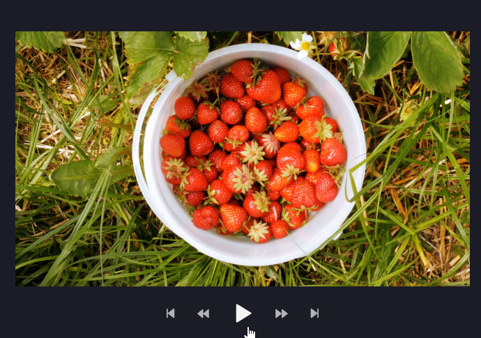 An image of the video viewing window with the mouse hovering on the play button.