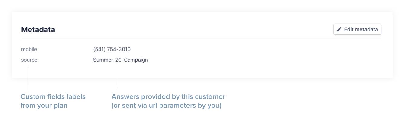 paythen-custom-fields-stripe-metadata