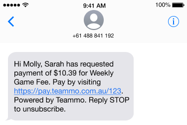 Screenshot of an example SMS team members receive if their team manager requests money