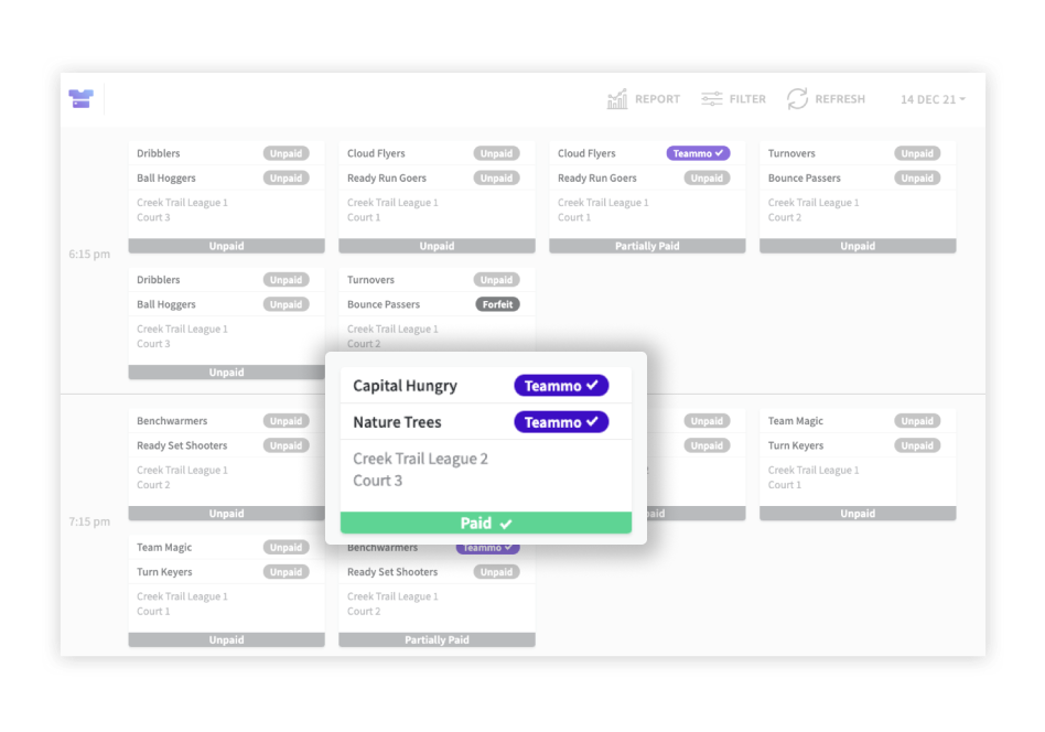 Example dashboard showing payments from teams using Teammo