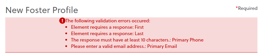 Sample errors a participant may receive on an intake form