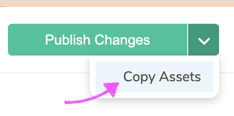 Copy Asset Button