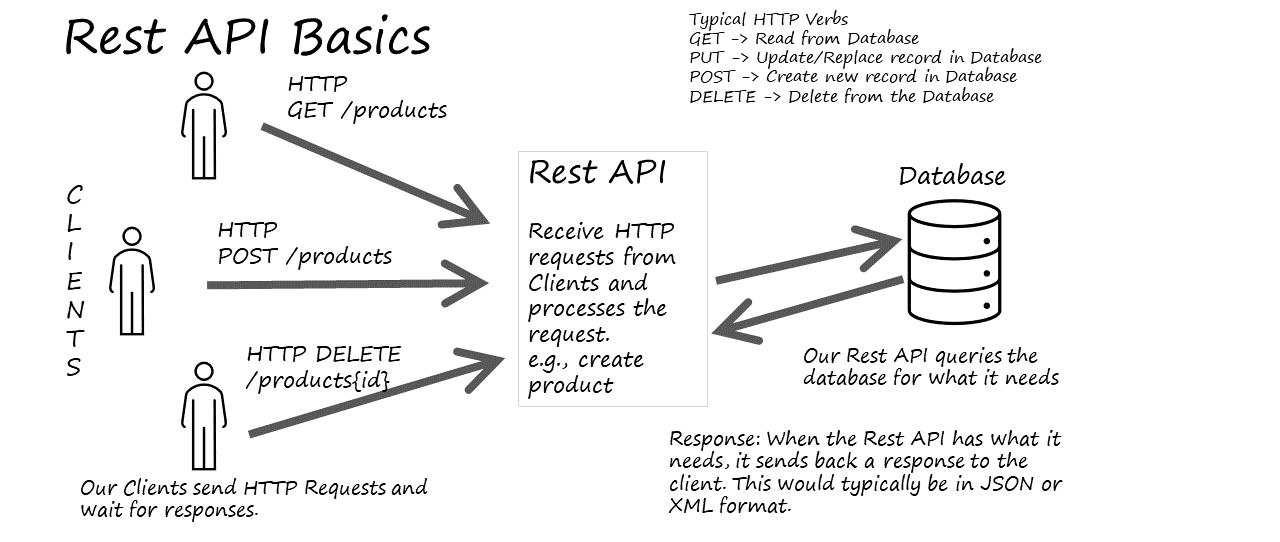 Synatic - API Basics