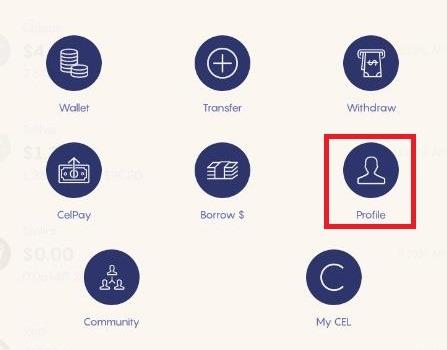 Cliquez sur le bouton Profile