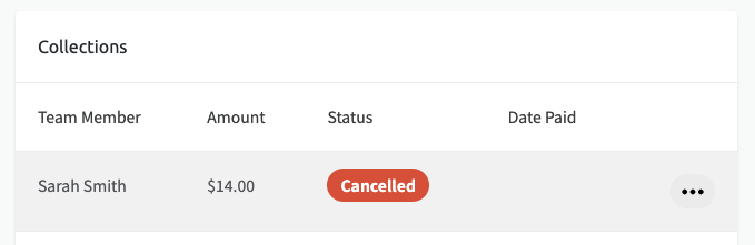 Screenshot of what displays after you cancel a team member's payment request