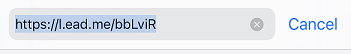 A complete short URL in a browswer's address bar.