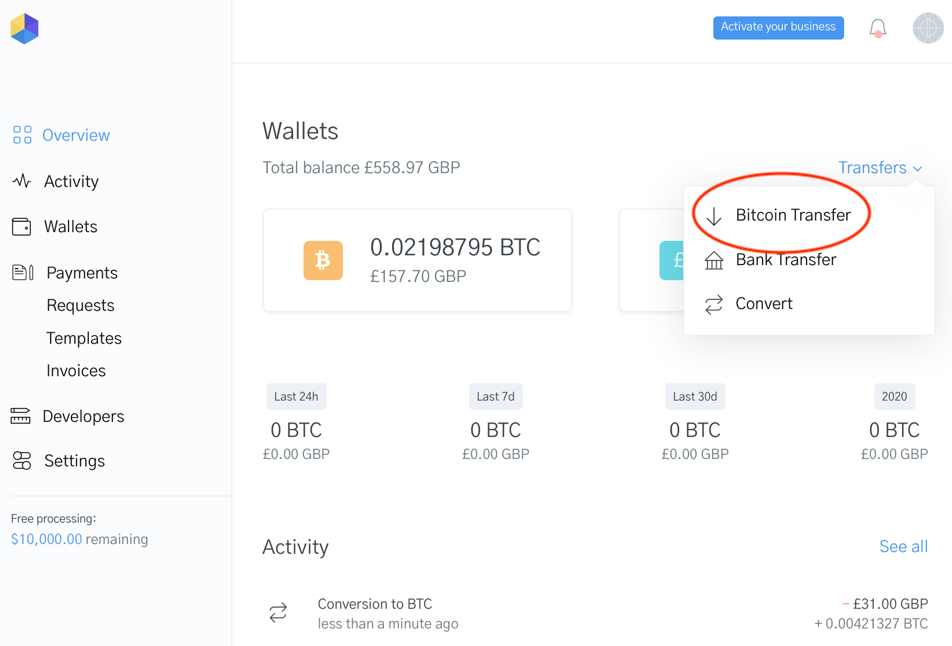 Image of how to send a Bitcoin payout in the OpenNode dashboard