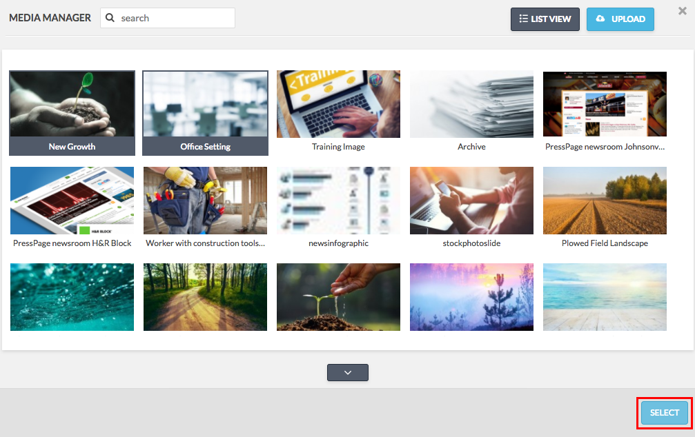 media manager with two images selected