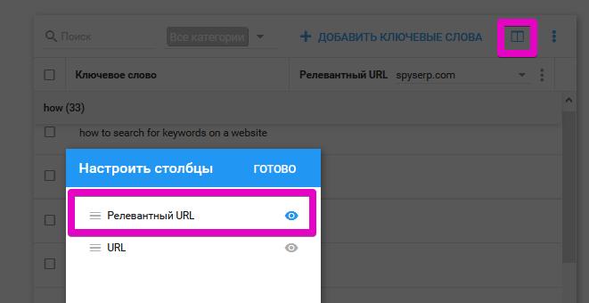 Настройка URL в SpySERP