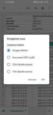 Choisissez le format Google Sheet