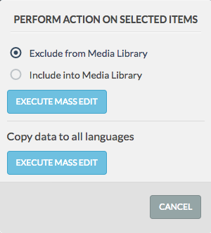 mass edit modal with options and execute button