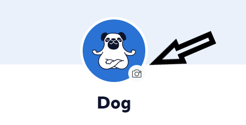 Screenshot of pet profile avatar with arrow pointing to camera icon