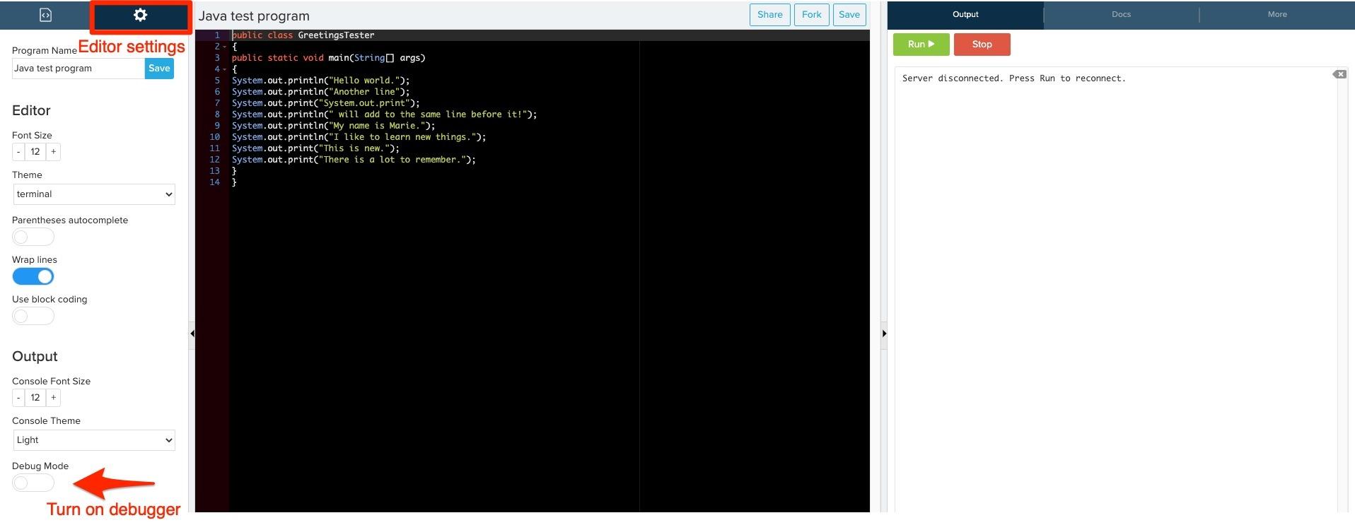 Image showing editor settings and debug mode