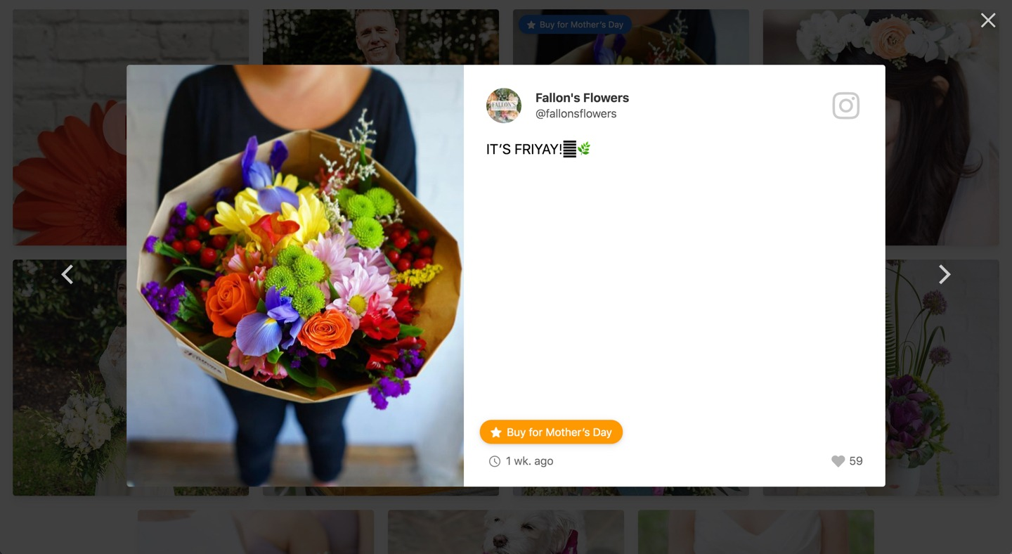 A popup view in Flockler's social media feed embed
