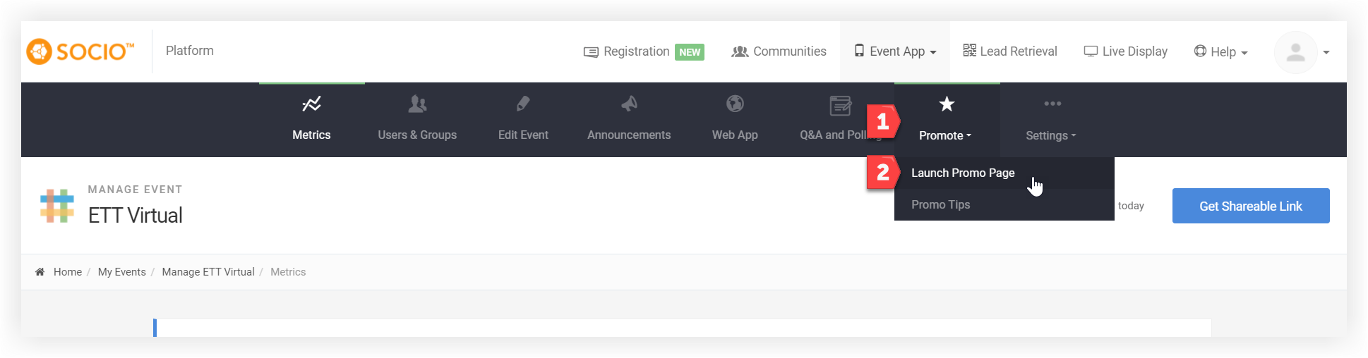 Screenshot of the Promote dropdown. The Launch Promo Page option is indicated.