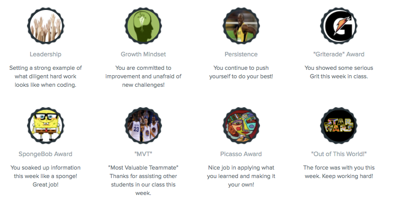 Examples of custom badges such as a Leadership, Growth Mindset, Persistence, and Picasso award