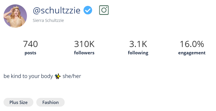 A screenshot of Heepsy showing that you can find an Instagram influencer's category just below their biography.