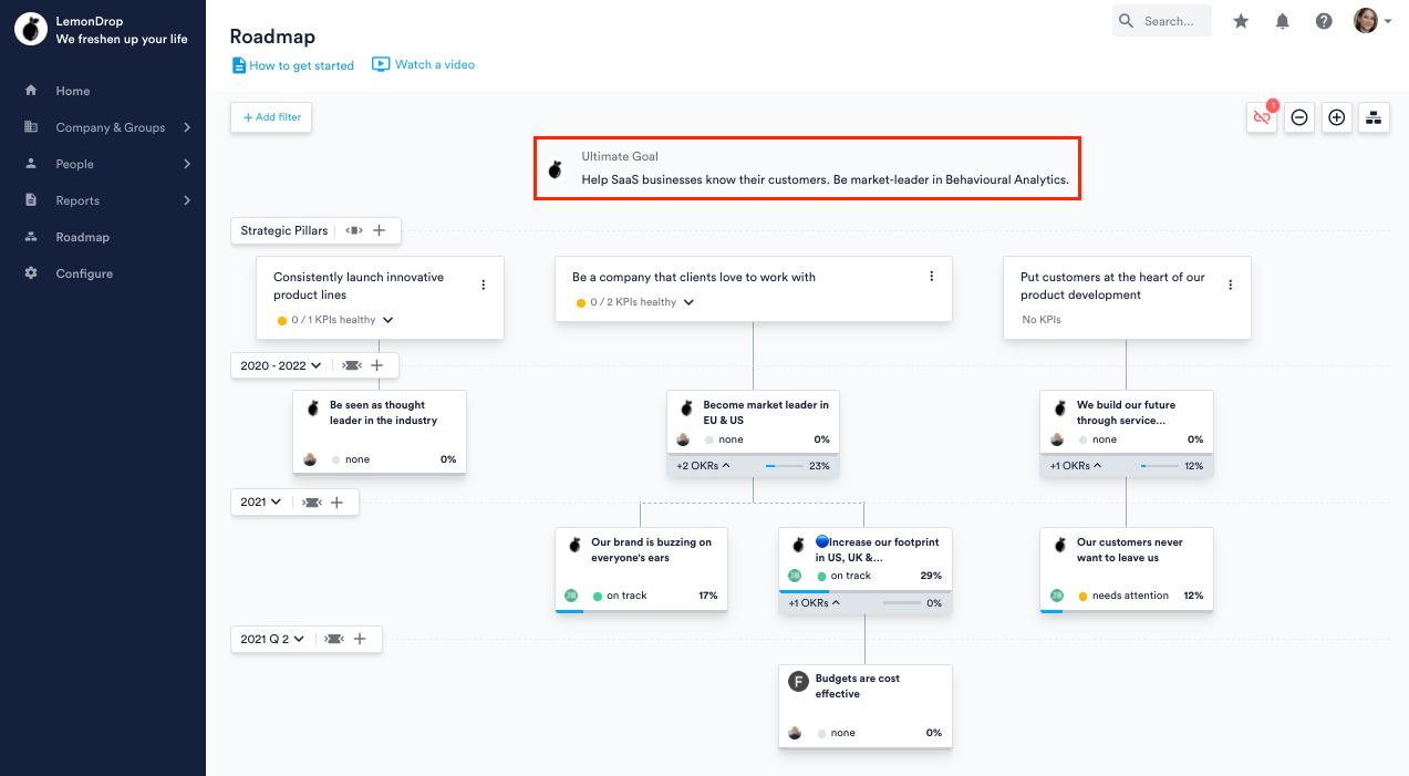 Ultimate Goal in Roadmap