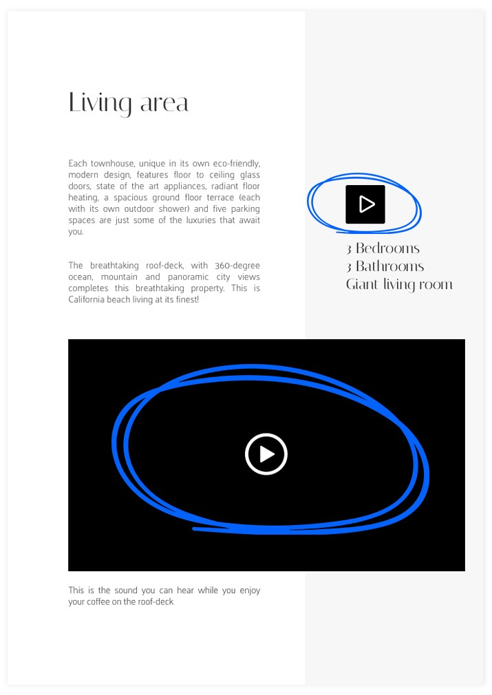 Video button and Video Widget on a publication