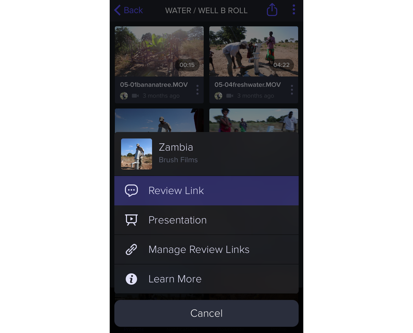 Sharing as a Review Page on the iOS app | Frame.io Support
