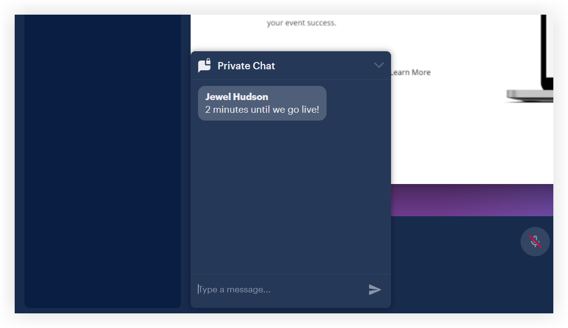 Screenshot showing the private chat panel expanded.