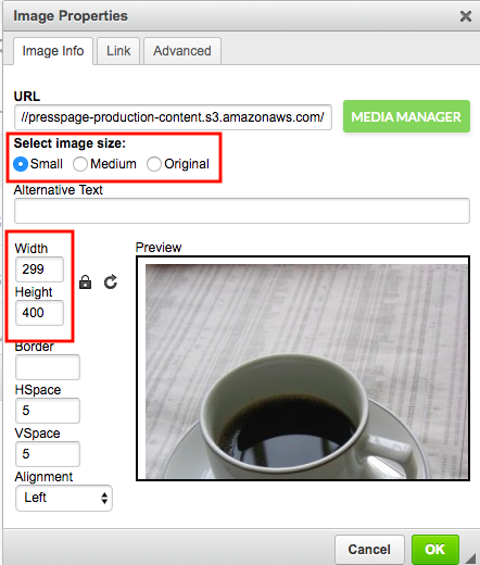 image properties modal with dimensions highlighted