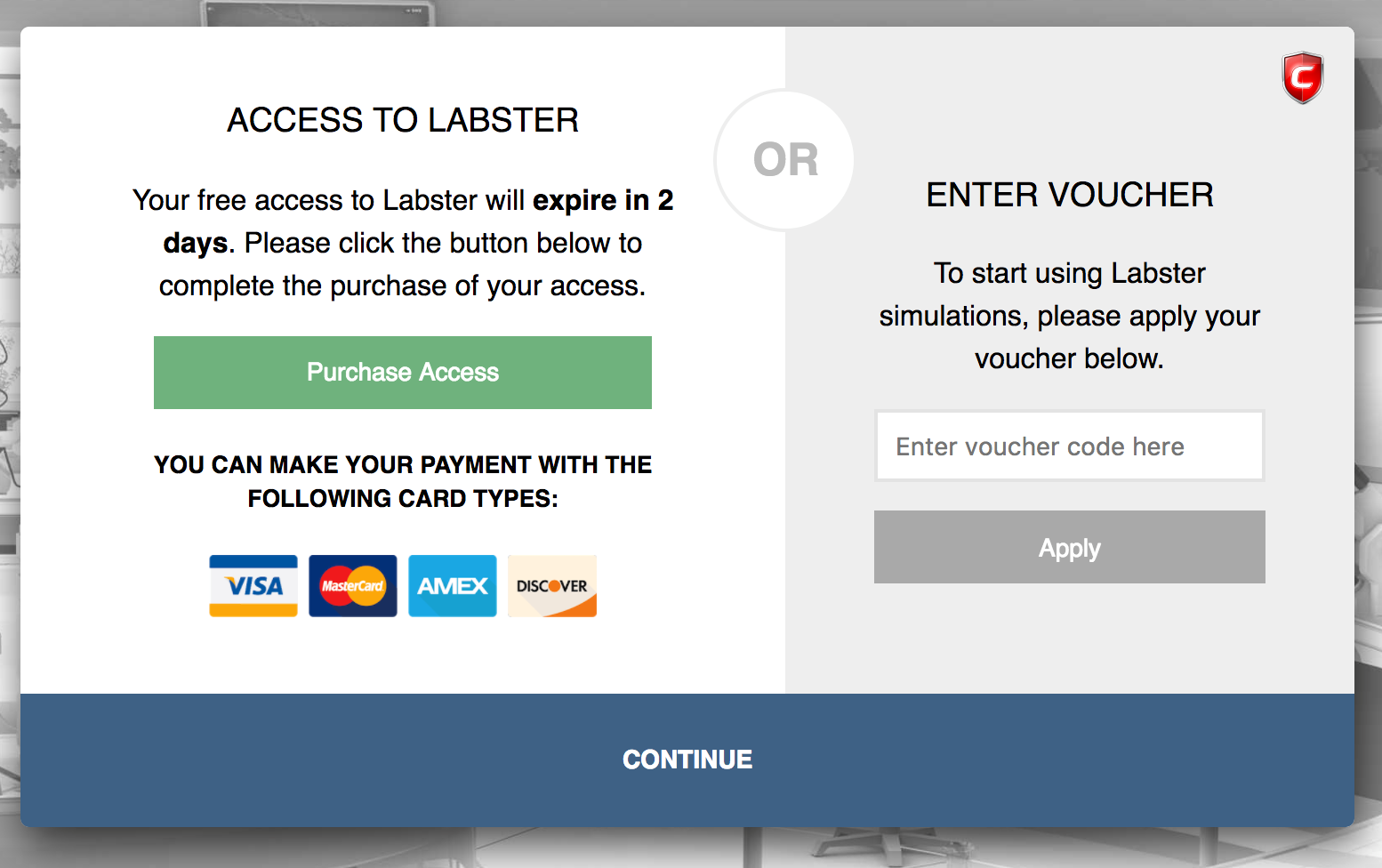 the different types of payment labster help center