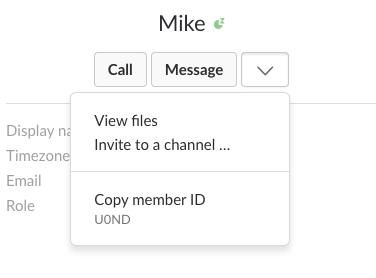 Find your Slack User ID