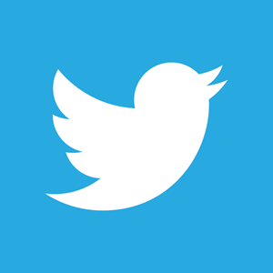 Twitter insights gtmhub help center gtmhub comes with following out of the box insights for popular social network twitter stopboris Images
